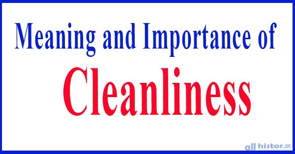 Importance of Cleanliness in Our Life